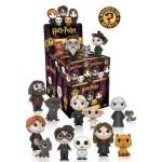 Mystery Mini Blind Box: Harry Potter Variant