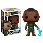 Pop! Games: Elder Scrolls - Warden